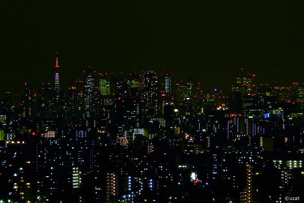 東京タワー嵐色