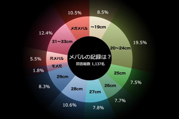 メバリング メバル 記録グラフ